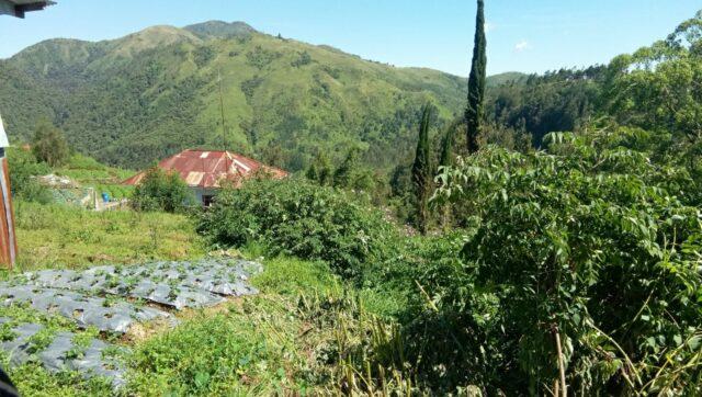 Spot lain dari Keindahan Pemandangan Cemoro Kandang