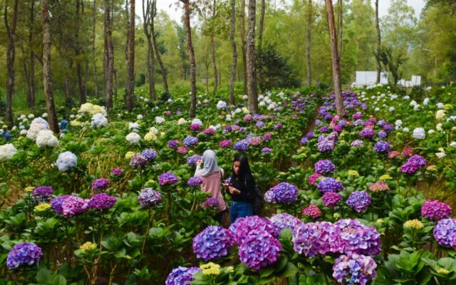 area taman bunga coban talun