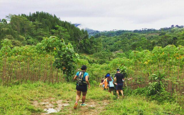 Trekking di kawasan hutan pinus sentul