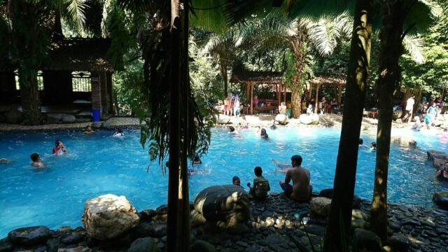 kolam renang dikelilingi taman