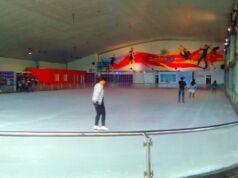 arena ice skating gardenice