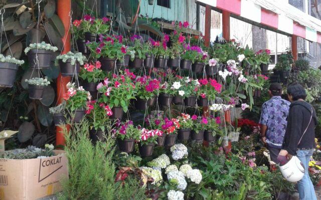 jejeran bunga-bunga di salah satu kios pasar wisata bandungan