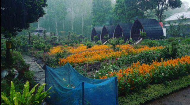 Pemandangan area Agrowisata Green Paradise