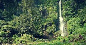 Curahan air Curug Cijalu Subang memiliki ketinggian mencapai 70 meter