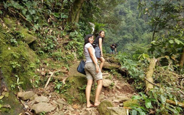 Jalur treking menuju air terjun menyajikan panorama hutan
