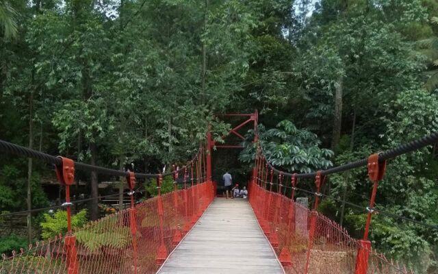 Jembatan menuju area hijau Cimory Forest