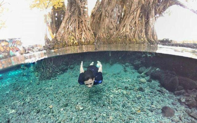 wisatawan sedang berenang di jernihnya kolam alami umbul manten