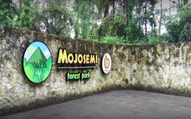 Mojosemi forest park - Jogja Towing Service
