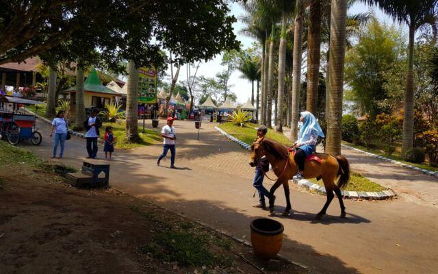 aktivitas naik kuda