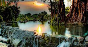 Panorama Umbul Manten Klaten dikelilingi pepohonan Ipik yang rimbun dan teduh