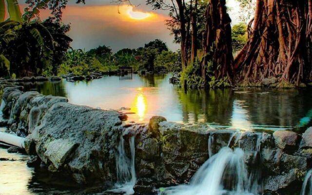 kolam alami umbul manten dikelilingi pepohonan rimbun