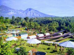 Area wisata kebun pak budi