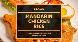 Promo Mandarin Chicken Rice