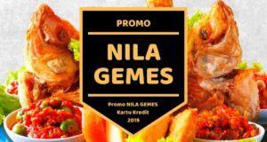 Promo Nila Gemes