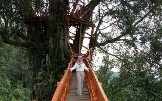 Rumah Pohon yang dibangun di dekat air terjun membuat wisata Curug Ciherang Bogor sangat populer