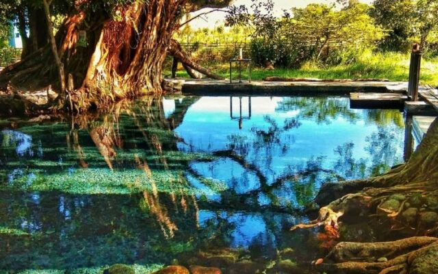 air kolam sebening kaca