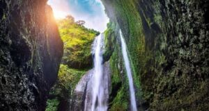 Air Terjun Madakaripura Probolinggo memiliki ketinggian 200 meter sehingga ditempatkan sebagai air terjun tertinggi di Pulau Jawa