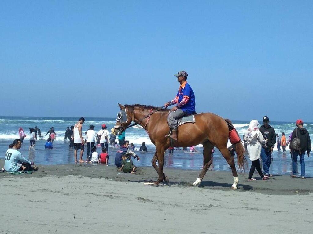 kegiatan menunggang kuda juga bisa dilakukan di pantai ini