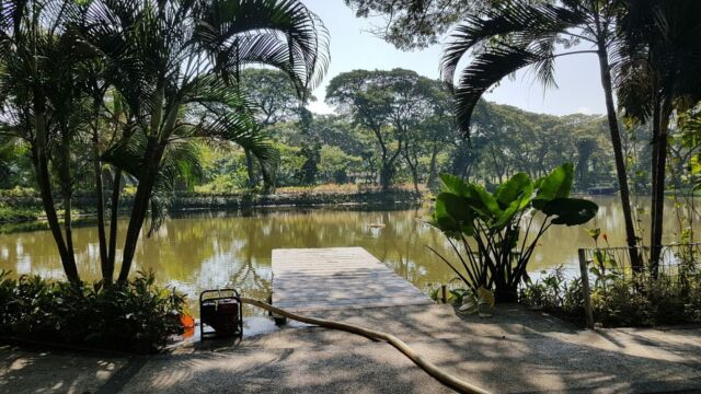 danau di kebun bibit wonorejo