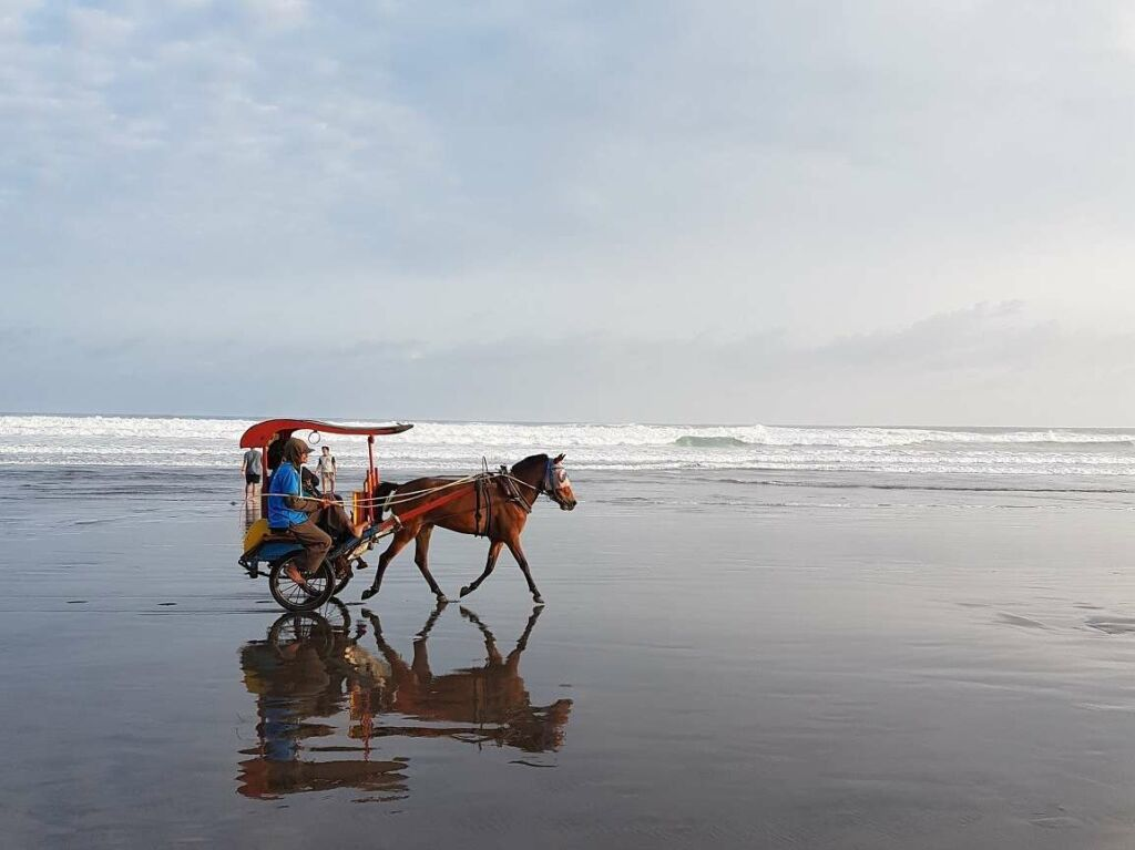 kereta kuda di tepi pantai