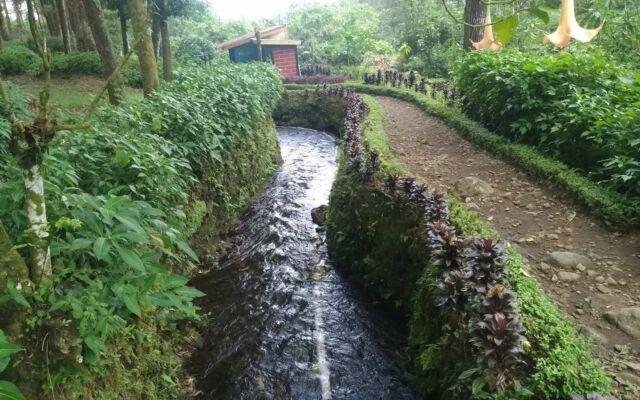 Wisatawan akan ditemani aliran sungai kecil di sisi kanan jalur menuju lokasi wisata