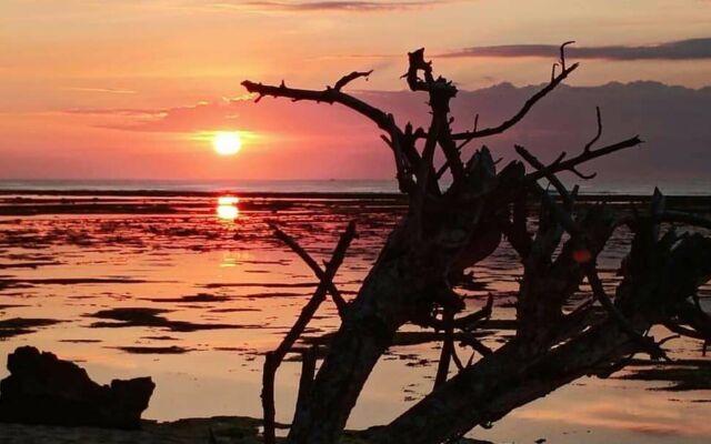 menyaksikan sunset dari tepi pantai