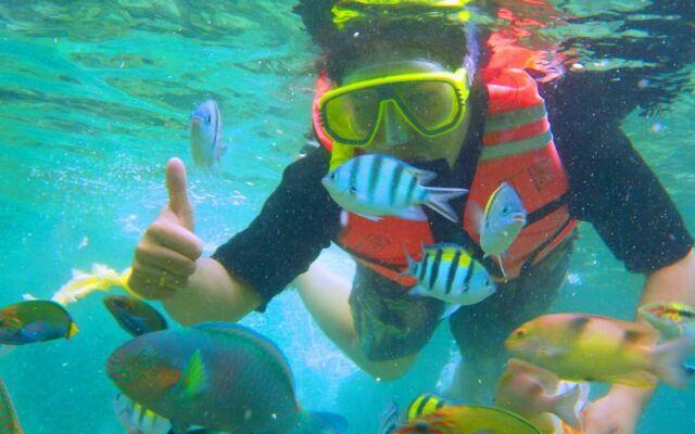 aktivias snorkling di kepulauan seribu