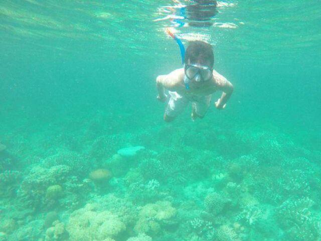 Wisatawan yang sedang snorkeling di pulau noko