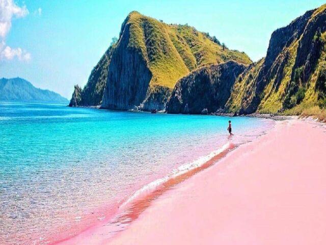 Pink Beach atau pantai pink