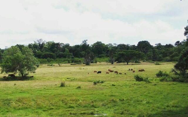 Pemandangan savana sadengan