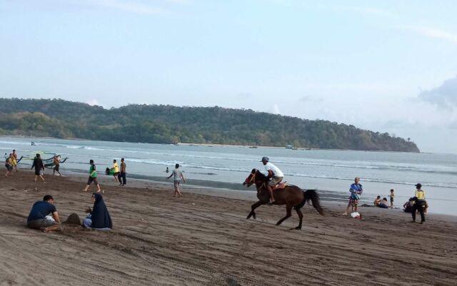 wisatawan dapat menyusuri garis pantai dengan berkuda