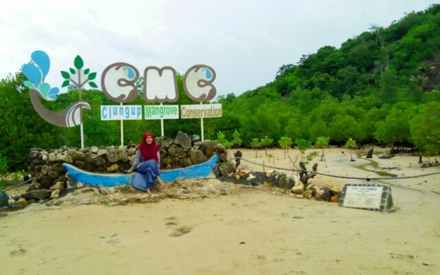 kawasan konservasi mangrove clungup