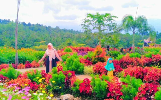 Pemandangan Taman Bunga Dempo Park