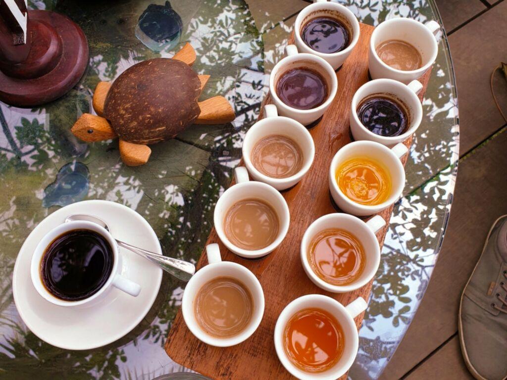 berbagai citarasa kopi