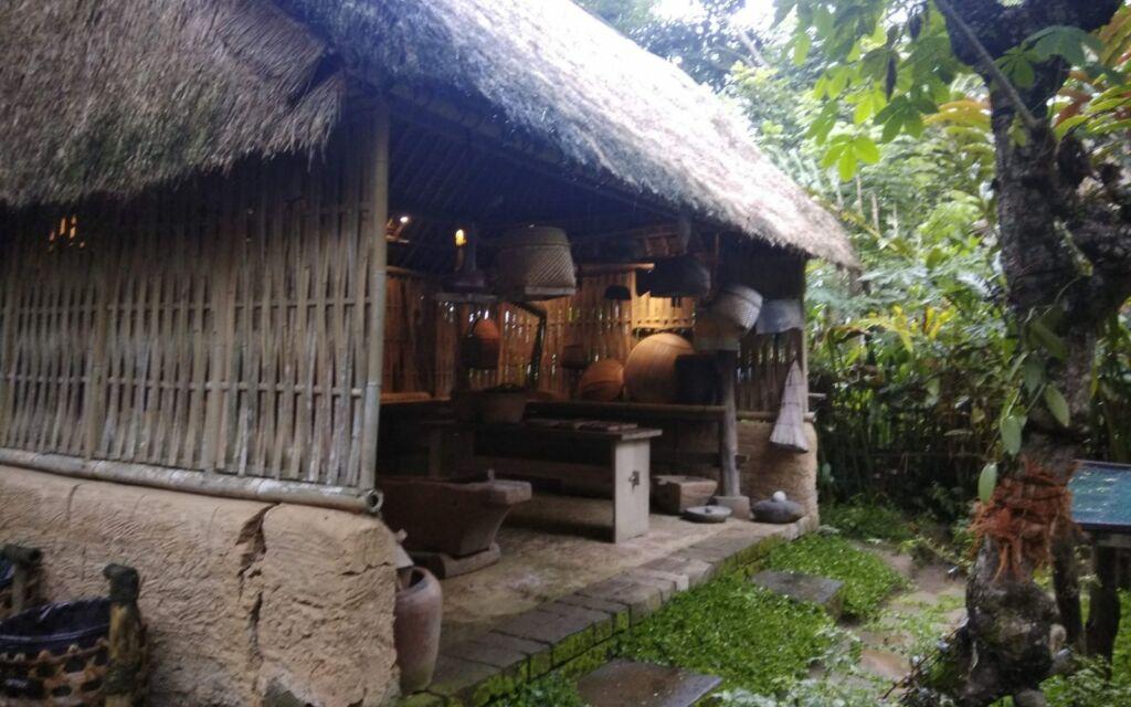 Pondokan di Perkebunan kopi luwak bali pulina