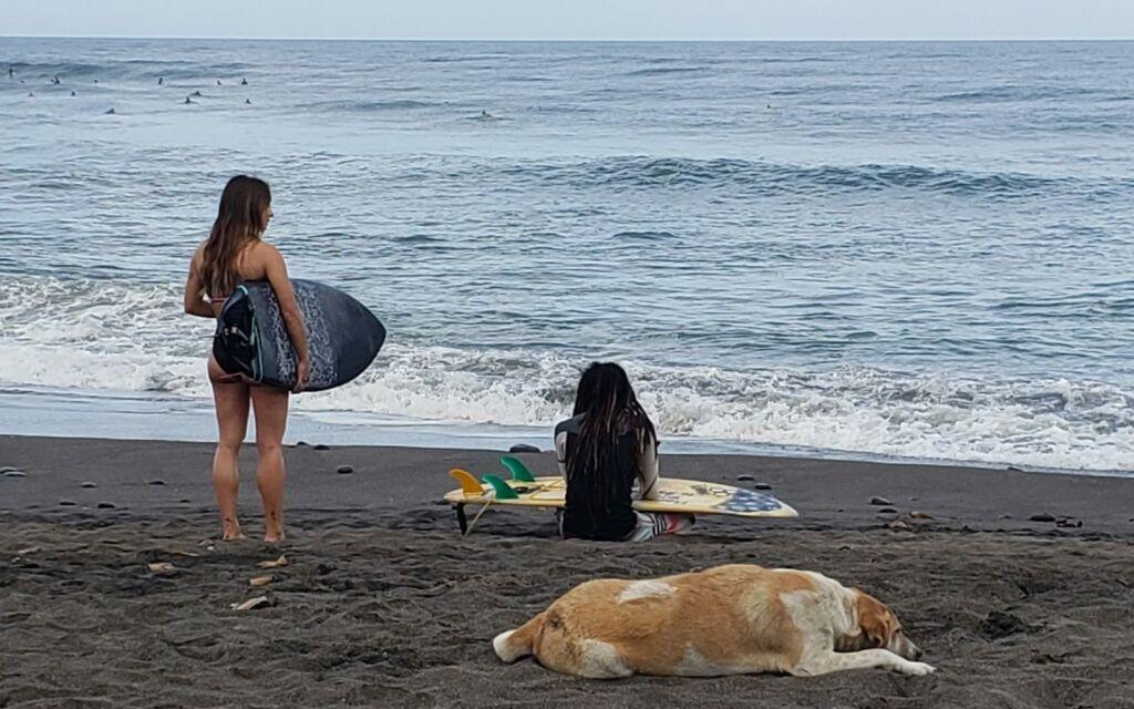 Pantai balian destinasi para peselancar