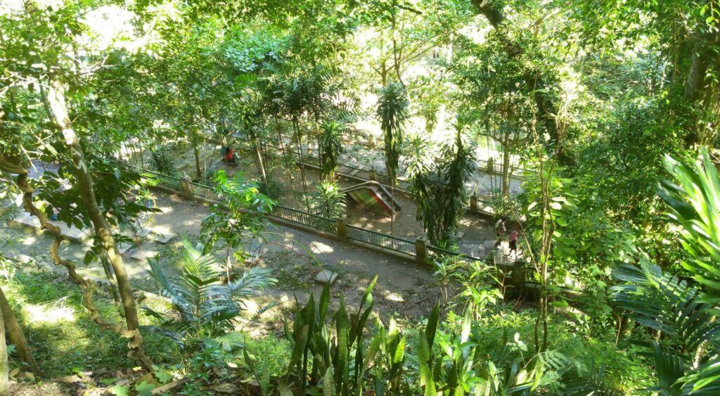 Rimbun kebun di kompleks Goa Selarong
