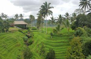 Pemandangan Alam Indah di Secret Garden Village