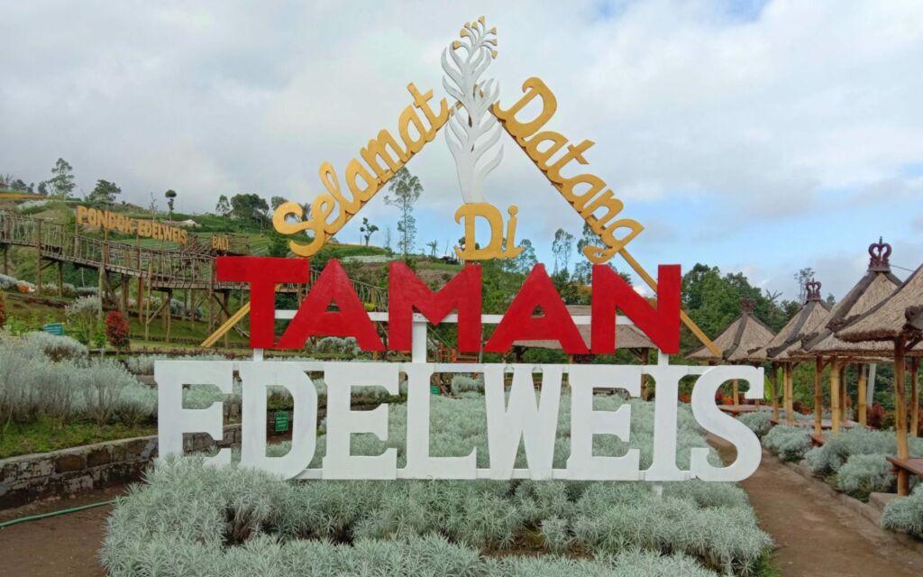 ornamen tulisan taman bunga edelweis