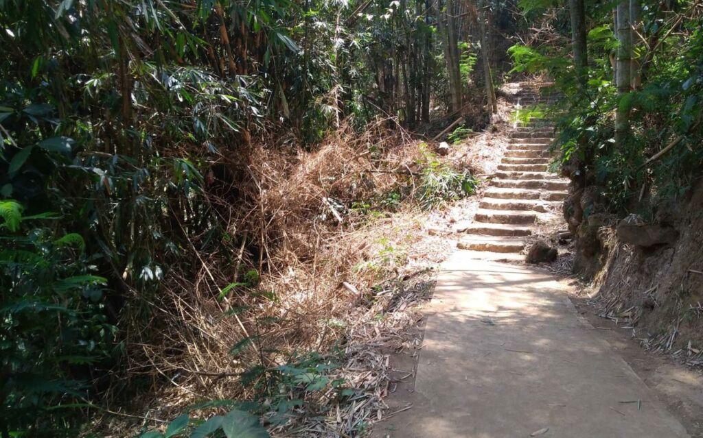 Jalur treking