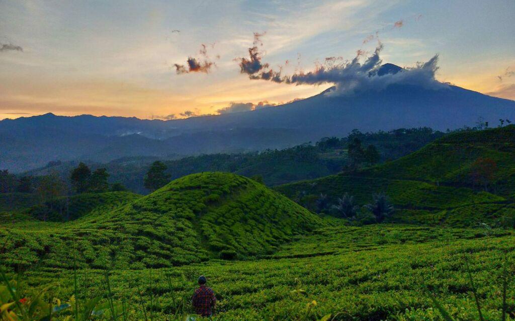 Bukit Kacapi Tasikmalaya