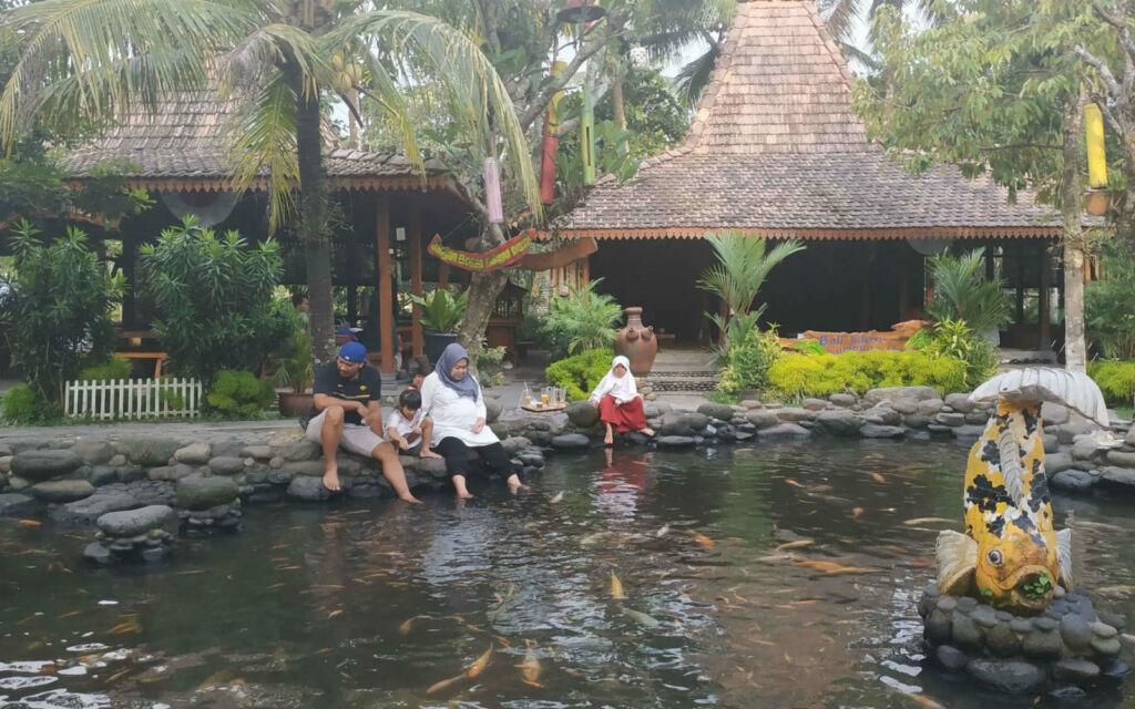 Terapi ikan di Kampung Flory