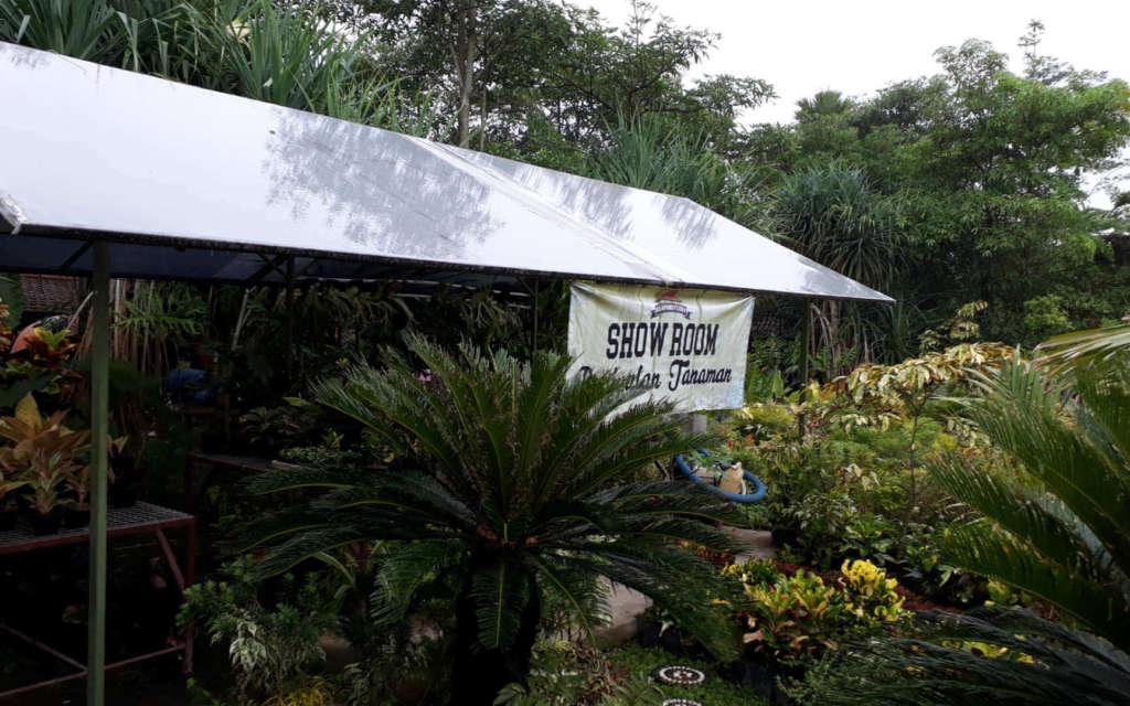 Salah satu ruang pamer tanaman di Kampung Flory