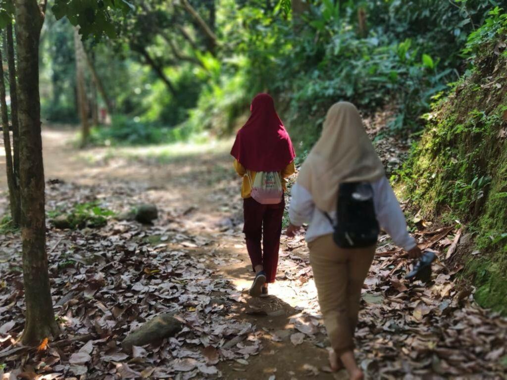 Menyusuri hutan