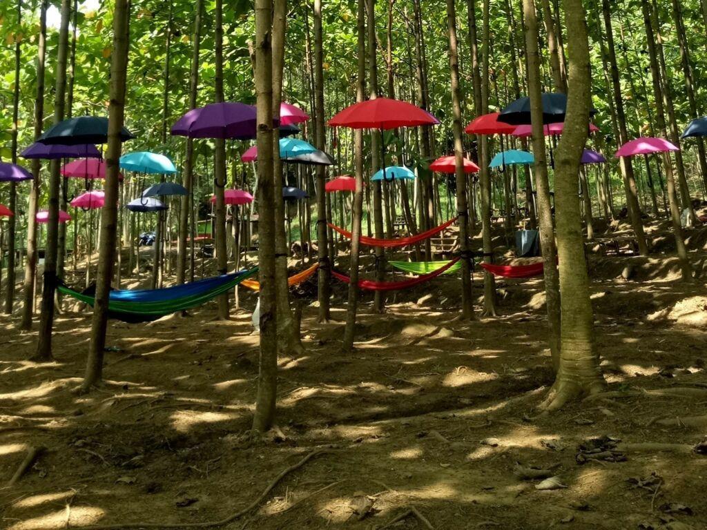Area selfie taman hammock