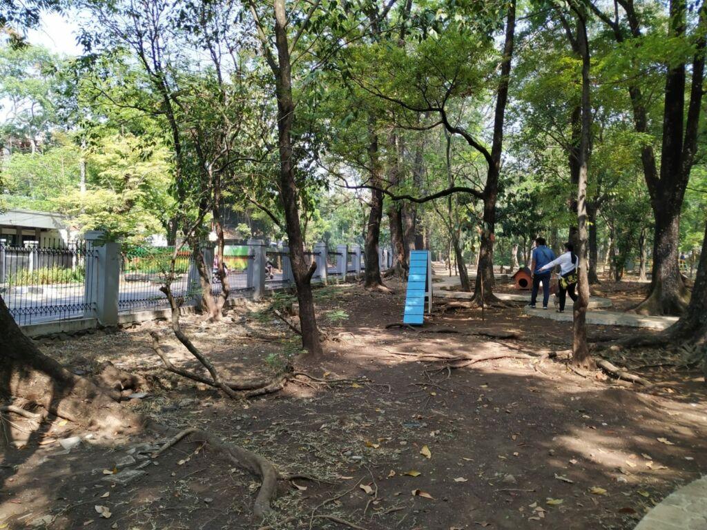 Suasana dalam taman