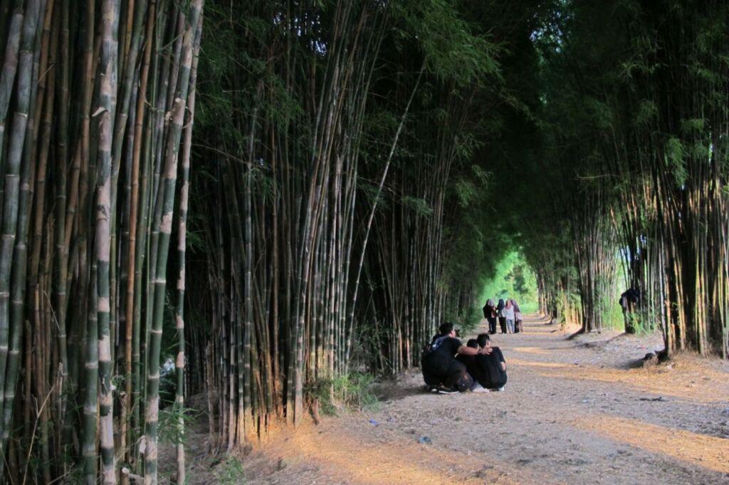 Asrinya Hutan Bambu Surabaya