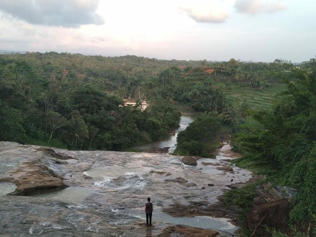 Panorama sawah