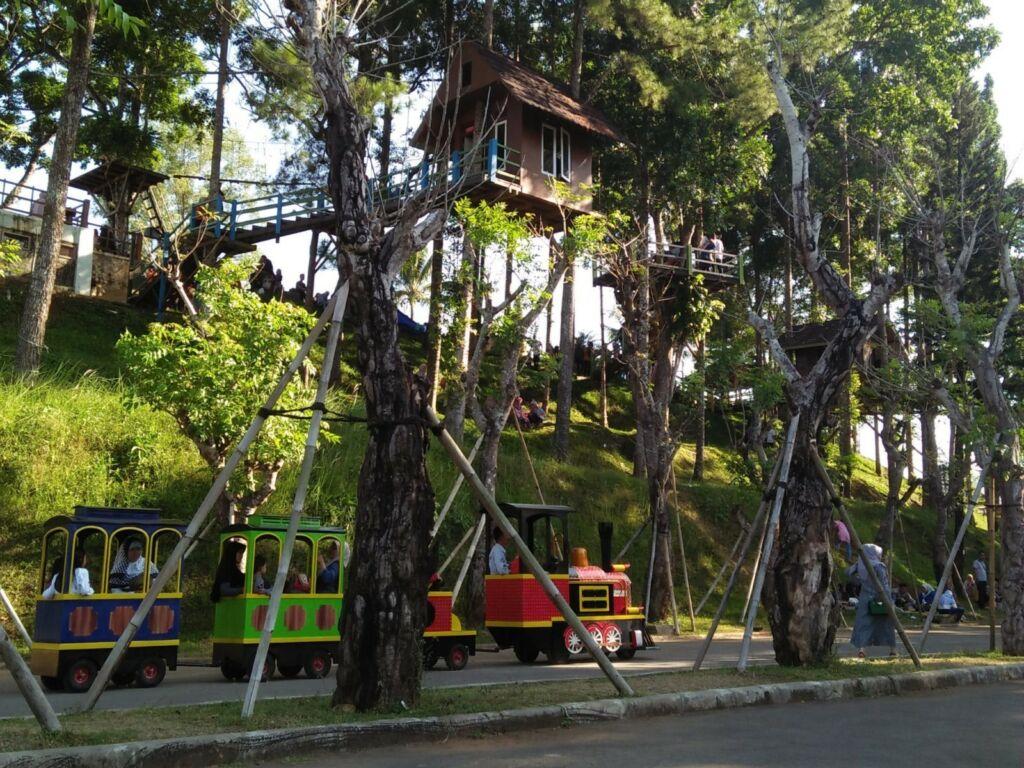 Rumah Pohon dan kereta api
