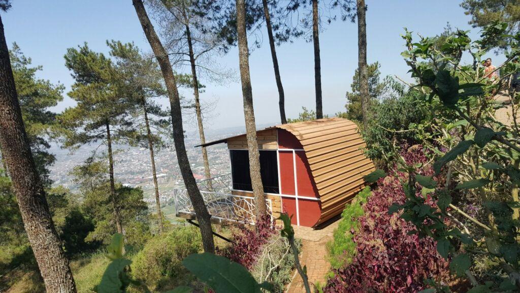 Banungan rumah pohon yang unik